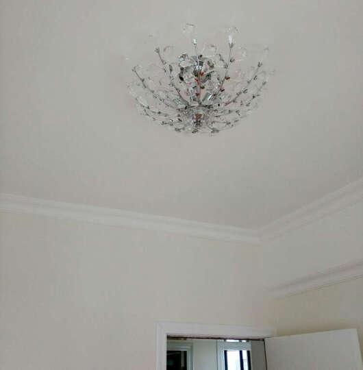 波西尔 水晶灯 卧室吸顶灯 餐厅LED灯饰 树枝形灯具 简约8210 直径50cm 6头 三色变光 晒单图