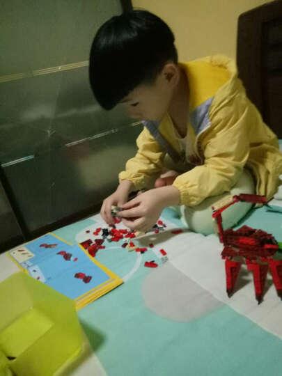 乐高LEGO创意百变三合一系列男孩儿童益智拼装恐龙飞机赛车积木玩具 像素马赛克壁画 31200乐高艺术生活系列- 西斯黑暗尊主 晒单图