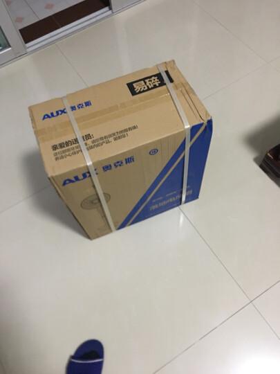 奥克斯(AUX)FS-40-A1613  电风扇/落地扇/家用静音风扇/五叶大风量风扇/空气循环扇 晒单图
