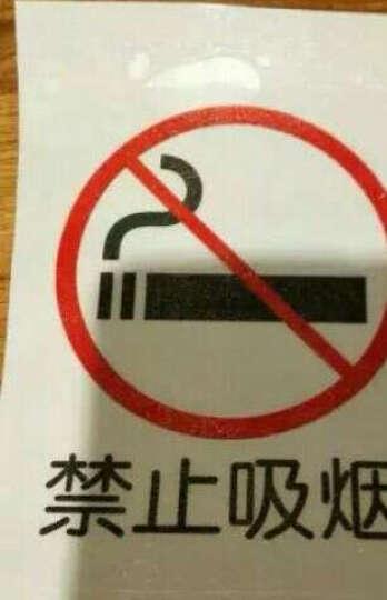 蓝瑞玻璃贴 禁止标识标志贴标示标牌玻璃贴墙贴纸禁止吸烟拍照外带同行免进 禁止打闹 带背胶 大 晒单图