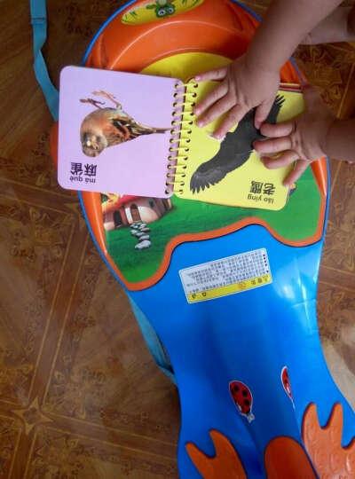 大贸商(DMSbuy) 乐乐鱼 撕不烂宝宝早教书识字卡片 儿童书籍玩具 翻翻书 翻翻书6本装(组合二) 晒单图