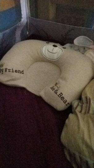 双漫婴儿枕头定型枕防偏头宝宝新生儿定型枕头纠正偏头 2019宝宝熊款 双枕套(换洗款) 晒单图