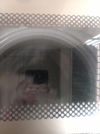 威力(WEILI)洗衣机 全自动 变频抗菌波轮 DD电机 晒单图