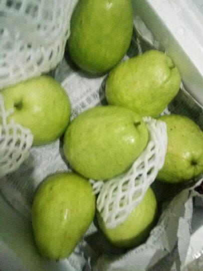 优木良品 广西白心番石榴 2.5kg 芭乐 水果 晒单图