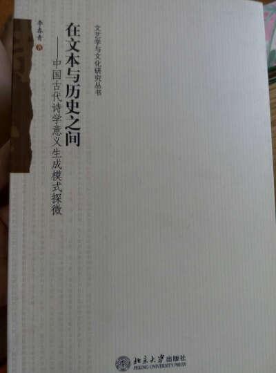 在文本与历史之间:中国古代诗学意义生成模式探微 晒单图
