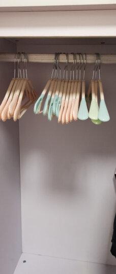【干湿两用】多功能魔术裤架家用衣柜挂裤子衣架围巾收纳挂架塑料整理挂裤子架 混色10支 晒单图
