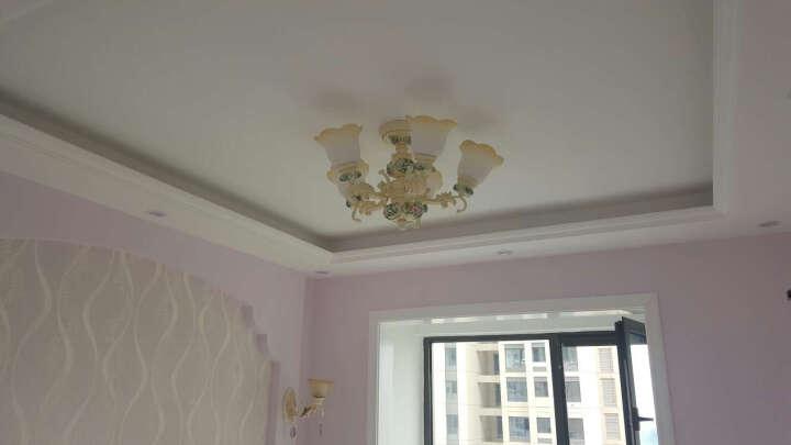 米族 欧式吊灯 简约现代创意客厅餐厅卧室吊灯 简欧灯饰灯具 10头+7瓦暖光LED光源 晒单图