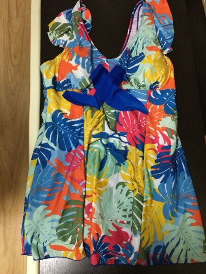 海波特(SEA'BBOT)泳衣女保守遮肚显瘦钢托游泳衣连体裙式平角妈妈大码温泉泳装 蓝叶子 5XL 晒单图
