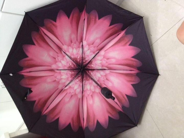 外滩故事晴雨伞 太阳伞防紫外线 防晒遮阳伞女士黑胶小黑伞 雨棠 晒单图