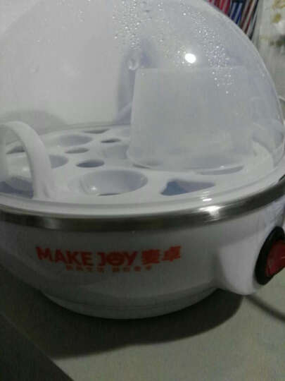 麦卓(MAKE JOY)ZD32蒸蛋器多功能煮蛋器 家用迷你自动断电不锈钢蒸蛋机早餐机 双层蓝色 晒单图