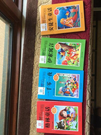 我爱幼儿园 [3-6岁]精装硬壳版国外儿童  图书 绘本幼儿园入学准备书 晒单图