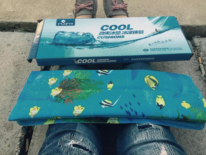 艾暖冰垫 汽车凉坐垫  椅垫冰床垫凝胶冰凉枕速冷医用冰袋冷敷消肿  夏季消暑降温神器 两个新凝胶款冰坐垫(45*45cm) 晒单图