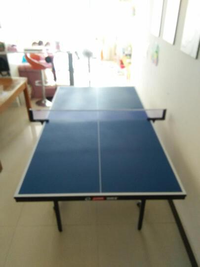 红双喜 乒乓球桌 家庭娱乐乒乓球台 可折叠 晒单图