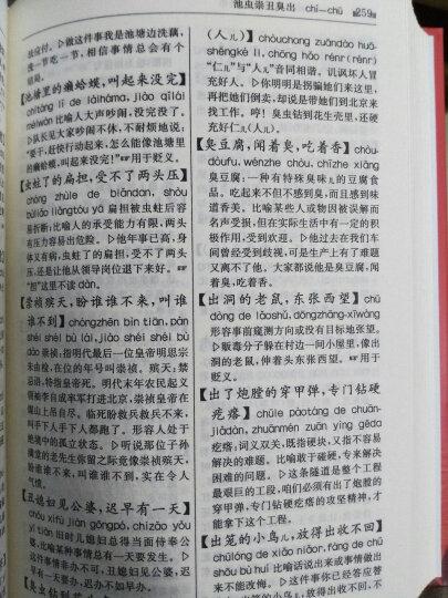 现代汉语谚语歇后语惯用语规范词典 晒单图