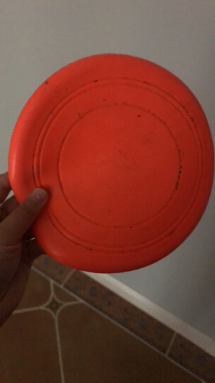 CHUKCHI楚克奇宠物耐咬飞盘狗狗用训练玩具 金毛边牧萨摩哈士奇橡胶飞碟硅胶飞盘 中型22.8CM橡胶飞盘 晒单图