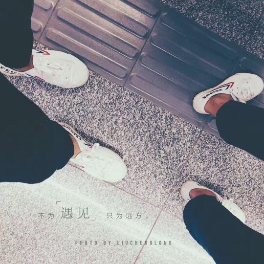 飞跃Feiyue经典款低帮情侣帆布鞋胶鞋 学生体育课球鞋 军训鞋田径运动鞋 黑色 37码偏大 晒单图