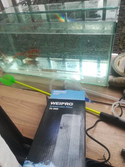 三友创美巴西龟水龟草龟鳄龟金钱龟 乌龟粮 乌龟宝宝龟饲料 330g 晒单图
