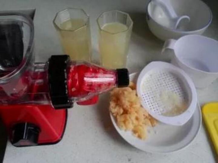 佐优 手动榨汁机家用慢速手摇原汁水果蔬菜果汁机 赠品推进器一个 晒单图