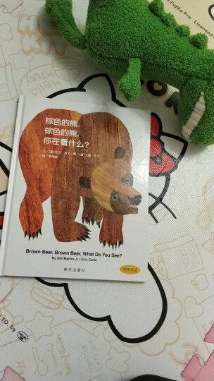 中国年度十佳童书《棕色的熊棕色的熊你在看什么(中英双语信谊世界精选图画书)(精)》日本绘本 晒单图