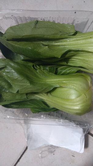 绿鲜知 圆白菜 包菜 卷心菜 绿甘蓝 约750g 火锅食材 新鲜蔬菜 晒单图