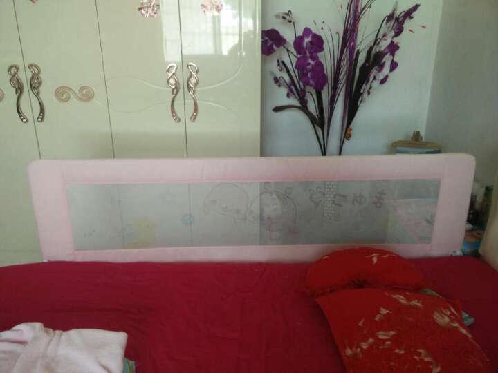 兔贝乐(rabbitbel) 婴儿童床围 欧式防摔床护栏1.8米床挡板防掉床宝宝通用护栏 海棠粉小海狮 1米8 晒单图