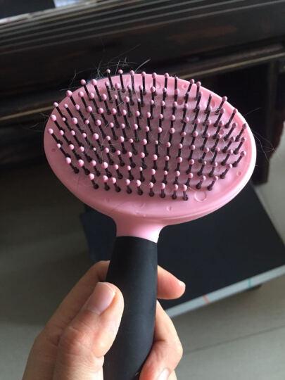 得乐(DELE)宠物自洁钢针梳 去浮毛死毛美容猫咪狗狗梳子 粉红色 晒单图