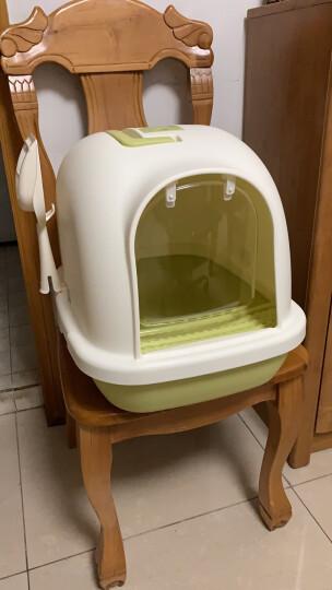 TOMCAT猫砂盆全封闭式猫咪用品猫厕所单层新款宠物猫用品 「封闭式」抹茶色中舱 猫砂盆 晒单图