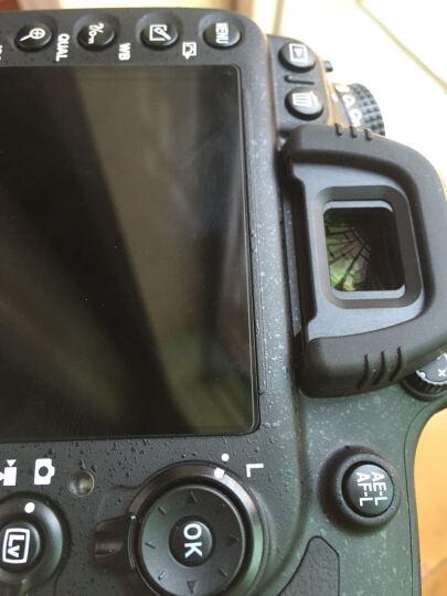 金钢(GGS)尼康 D600/D610贴膜 相机贴膜 单反相机钢化膜 金钢膜 相机屏幕保护膜 晒单图