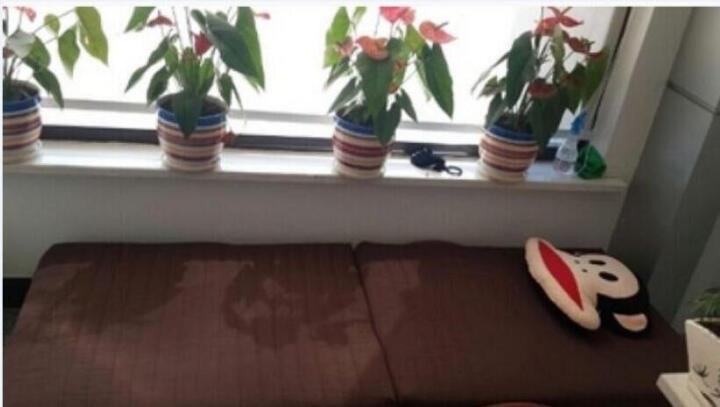 everjoys 折叠床单人床1米2折叠午休躺椅行军床1.2米床双人午睡钢丝床简易办公室床 优雅咖啡色 0.75米宽送货到楼下 晒单图
