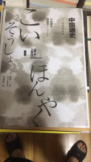 鲤译丛·中国通史:问题史试探 晒单图