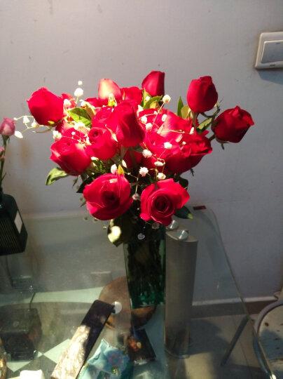 花语天下鲜花速递33朵玫瑰花情人节生日表白礼物送女友爱人全国同城花店配送北京上海广州深圳西安天津 99朵粉玫瑰(丝带款) 平时价格 晒单图