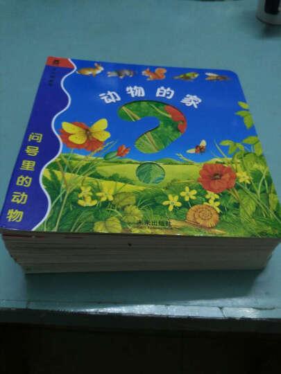 问号里的动物(套装共10册) 晒单图