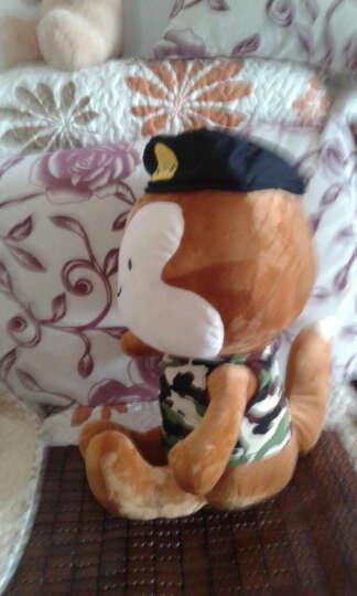 聚可爱 太阳的后裔公仔 兔子周边 郎君毛绒玩具 宋慧乔仲基同款布娃娃泰迪熊 送女生日礼物 迷彩郎君 40cm(会唱歌韩文主题曲) 晒单图