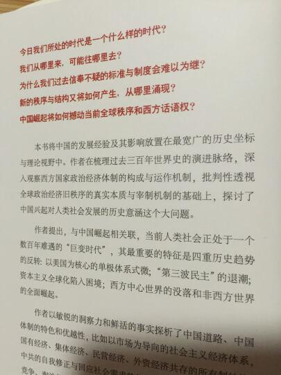 2015中国好书 高思在云-中国兴起与全球秩序重组 晒单图