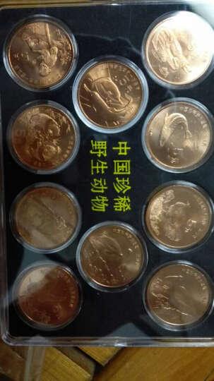 楚天藏品 澳门生肖10元对钞纪念钞 2013年蛇年1对 晒单图