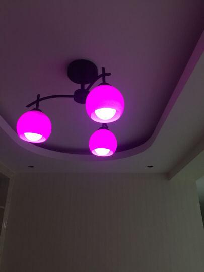 健康民居led灯卧室灯客厅灯简约 美式北欧创意餐厅灯具吸顶吊灯饰组合套餐 喇叭款 5+1头+led灯泡 白光 晒单图