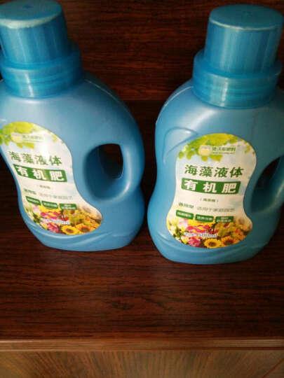 德沃多肥料 植物营养液通用型土水培花肥料盆栽多肉绿萝绿植花卉叶面肥 500ml一瓶+1L多肉土 晒单图