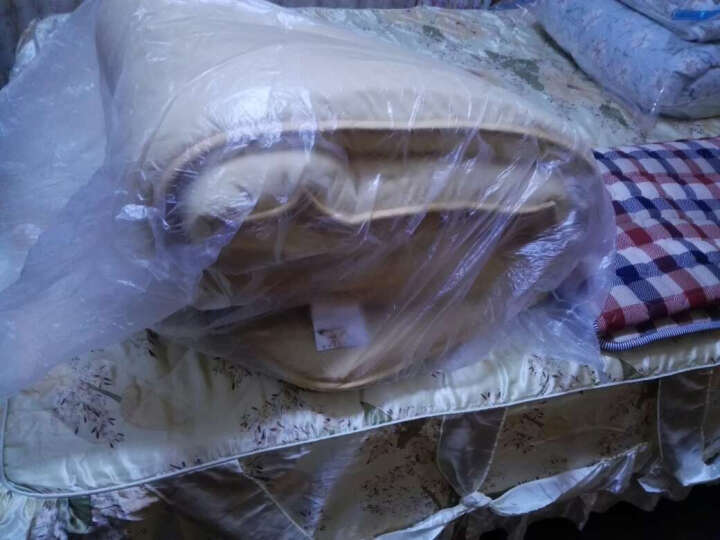 芝夏家纺 可拆洗 日式双人1.8m冬季加厚保暖榻榻米床垫床褥1.5m折叠地铺地垫单人宿舍地铺神器 流星雨-厚10cm 1.8x2 米 晒单图