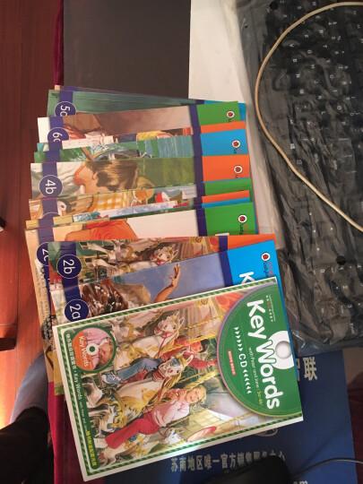 快乐瓢虫双语童书·自然拼读之单词家族 晒单图
