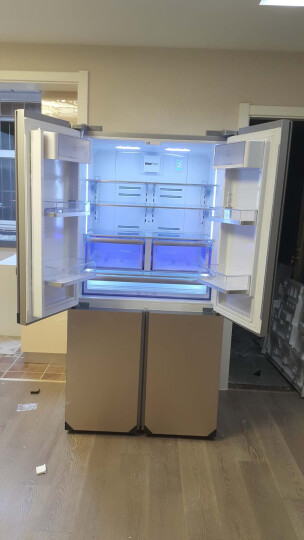 欧洲英国倍科(BEKO) 十字对开门冰箱 风冷无霜变频节能  原装进口电冰箱 进口GNE114622ZICG 556升香槟色 晒单图