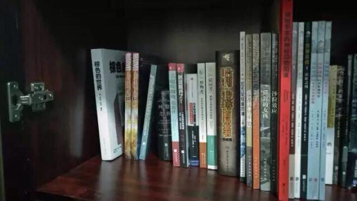 卢思浩畅销作品集:愿有人陪你颠沛流离 + 你要去相信,没有到不了的明天(套装共2册) 晒单图