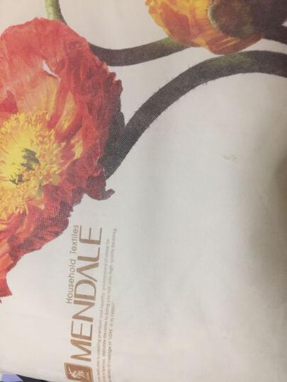 【决明子+薰衣草】梦洁家纺出品MEE 枕头枕芯清新草本枕颈椎枕保健护颈枕单只装 舒柔决明子香薰枕 45*72(一对装) 50*70cm 晒单图