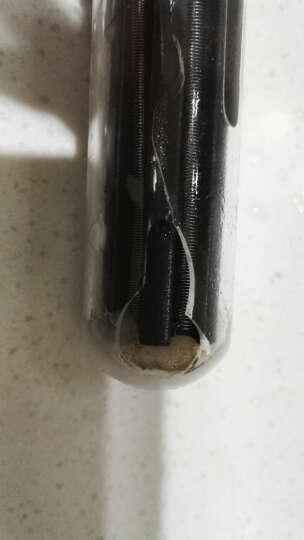 鱼缸加热棒恒温棒自动感应水族箱发热器防爆数码显示智能电子感温系统控制 H-50W 带LED温显双温调离水断电 晒单图