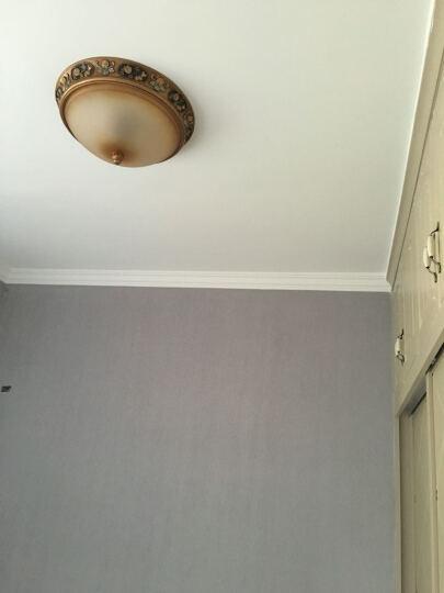 格雅诺 欧式吊灯 简约现代创意客厅餐厅卧室吊灯 简欧灯饰灯具0020 0020-3头朝上珍珠银 晒单图