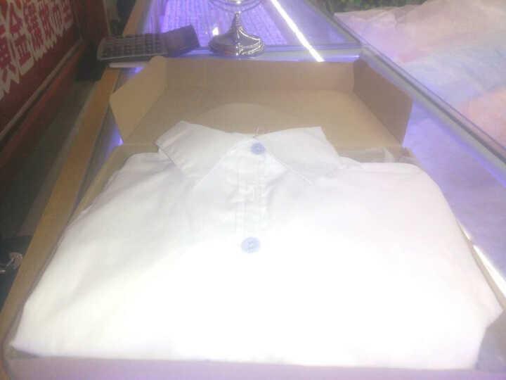 DGPZ2020年夏秋新品长袖衬衫女免烫正装白色显瘦面试工作服OL寸衣送领结免烫抗皱G1206 白色短 XL适合120斤左右 晒单图