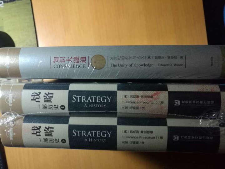 战略:一部历史(精装共2册)[罗辑思维] 晒单图