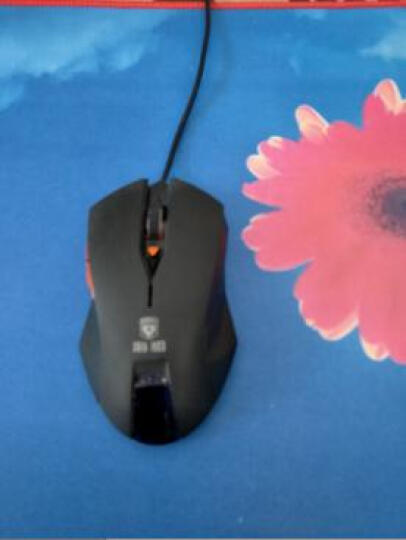 果敢 大号鼠标垫 包边防滑游戏鼠标垫 高灵敏可水洗键盘鼠标垫 创意动漫电脑办公 亚索800*300mm 晒单图