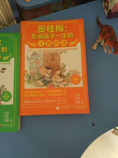 窦桂梅:影响孩子一生的主题阅读(小学四年级专用) 晒单图