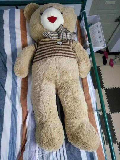 魔法龙 新款毛衣泰迪熊公仔抱枕毛绒玩具熊布娃娃玩偶玩具熊大号抱抱熊大熊猫生日礼物女生 咖啡条纹毛衣-开心泰迪熊 1.2米 晒单图