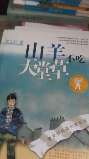 经典阅读:女儿的故事+女生贾梅全传+男生贾里全传(套装全3册) 晒单图